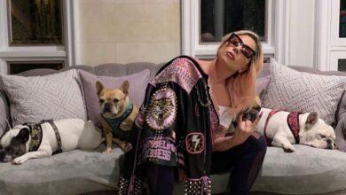 Photo of Doi câini ai cântăreţei Lady Gaga au fost furaţi, după ce persoana care îi plimba a fost împuşcată. Artista oferă o recompensă de 500.000 de dolari
